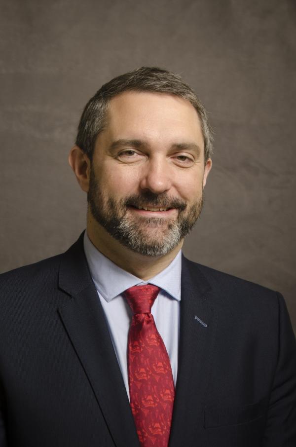 Premier Sandy Silver