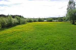 Community garden site in Watson Lake