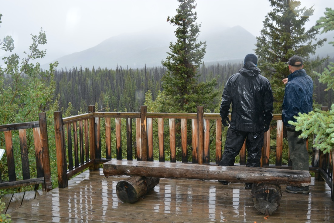viewing deck at Spruce Beetle Trail, Yukon.