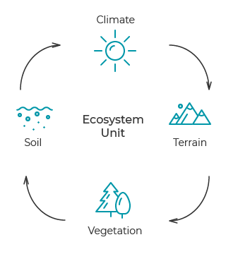 Ecosystem unit diagram.