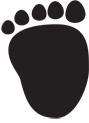 Polar Bear track, hind: 17.3 x 19.8 cm.