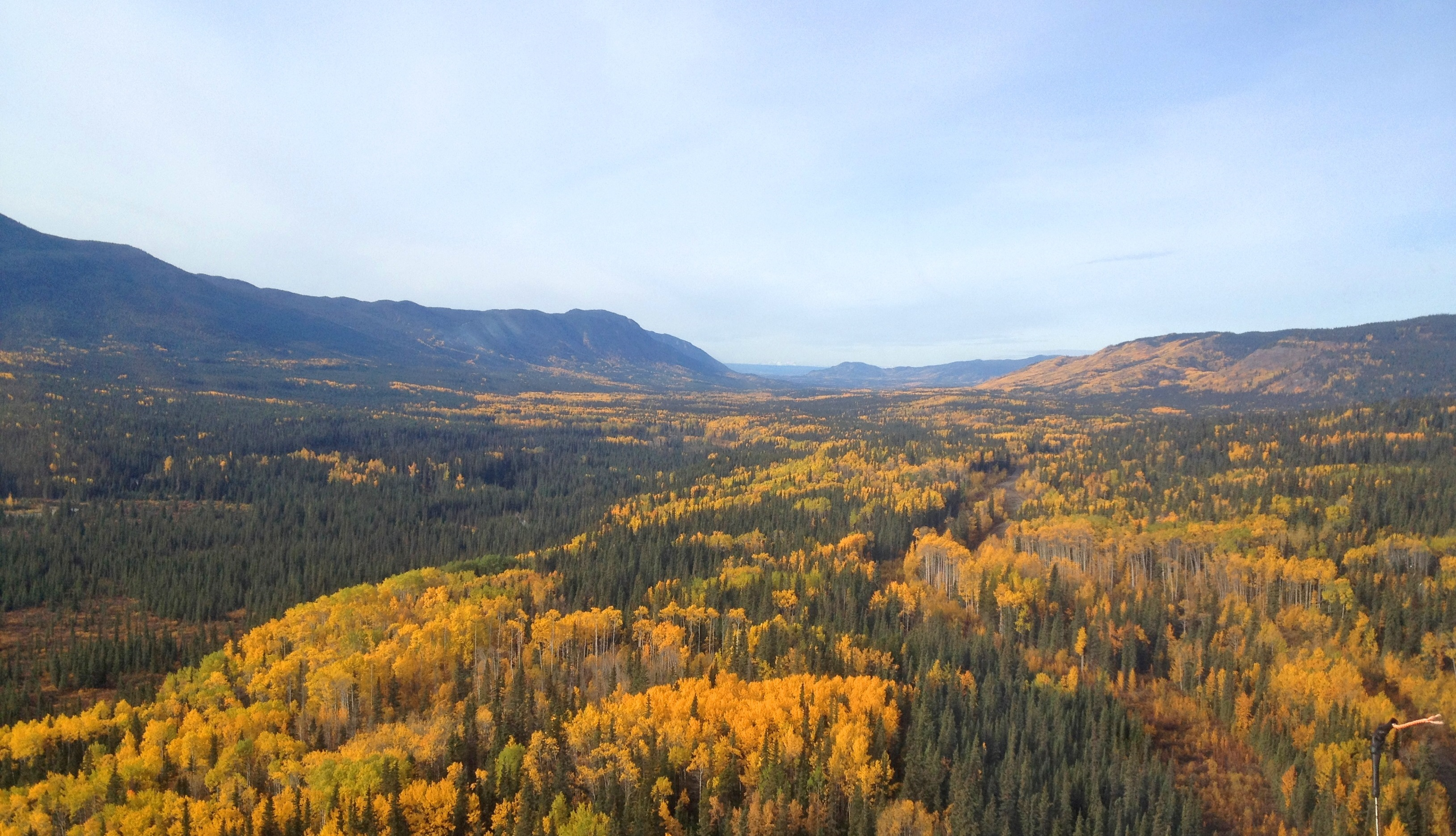 A Fall view of Yukon wilderness.