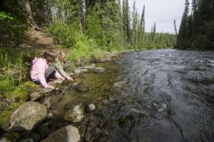 Creek at Big Creek Campground, Yukon