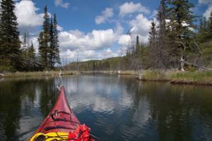 Sea kayaking the beaver ponds at Snafu Lake Campground, Yukon.