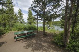 Campsite in open pine forest overlooking the lake, Tarfu Lake Campground, Yukon