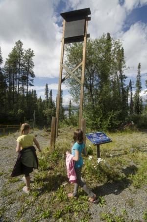 Children by the bat house at Squanga Lake Campground, Yukon