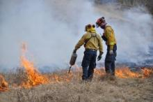 Wildland Fire Management firefighters carrying out prescribed burning in the Takhini area in 2018.