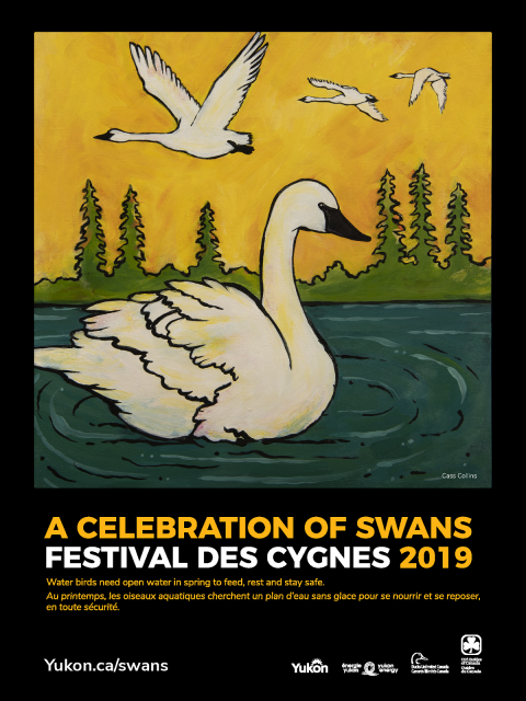 2019 A Celebration of Swans poster