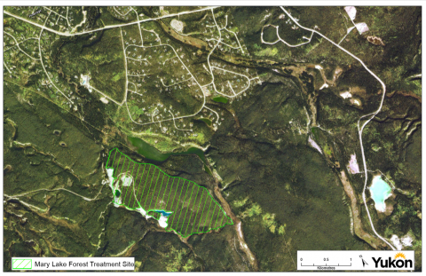 Mary Lake fuel risk reduction site